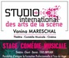 Stage comedie musicale Mama Mia / Chicago - Studio International des Arts de la Scène