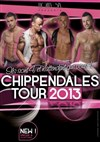 Chippendales tour 2013 - M&#233;ga CGR