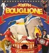 Le Cirque Joseph Bouglione dans R&#233;tromania | - Le Mans - Chapiteau Cirque Joseph Bouglione au Mans 