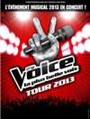 The voice tour 2013 - Zenith amiens