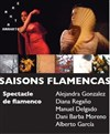 Saisons flamencas - Auditorium Maurice Ravel