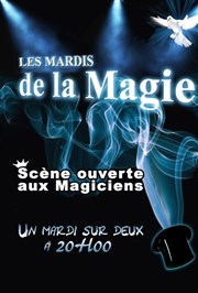 Les lundis de la magie Brasserie La Maison