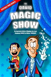 The david magic show La Com�die des Suds Affiche