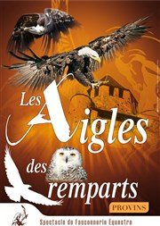 Les Aigles des remparts de Provins Thtre des remparts - Cit mdivale