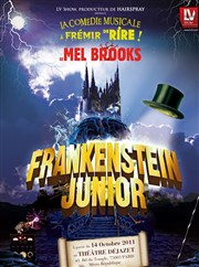 Frankenstein junior Th��tre D�jazet Affiche