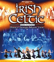 Irish Celtic Z�nith de Paris Affiche