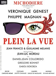 Plein la Vue | avec Véronique Genest Th��tre de La Michodi�re Affiche